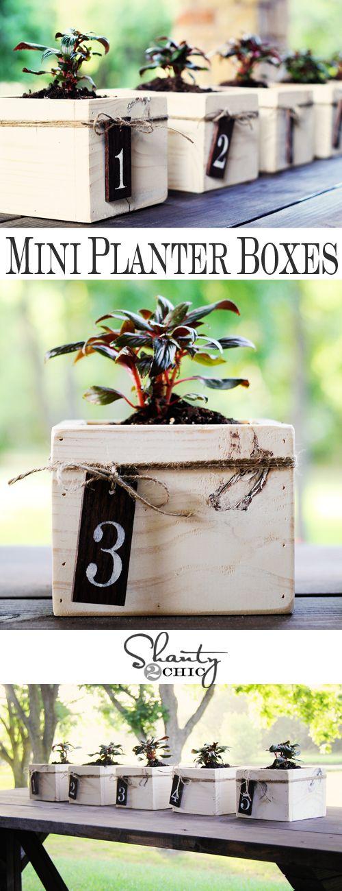Mini Planter Boxes