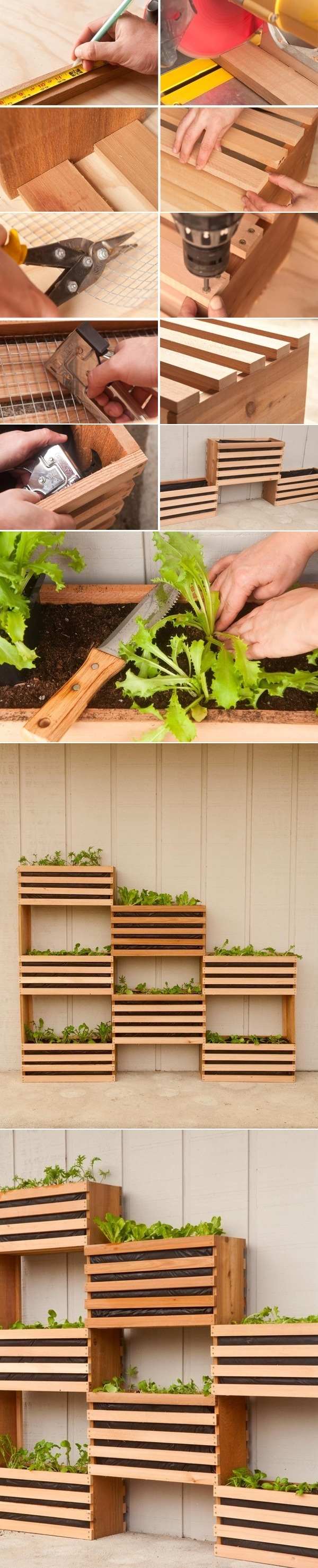 Modern, Space-Saving Vertical Vegetable Garden