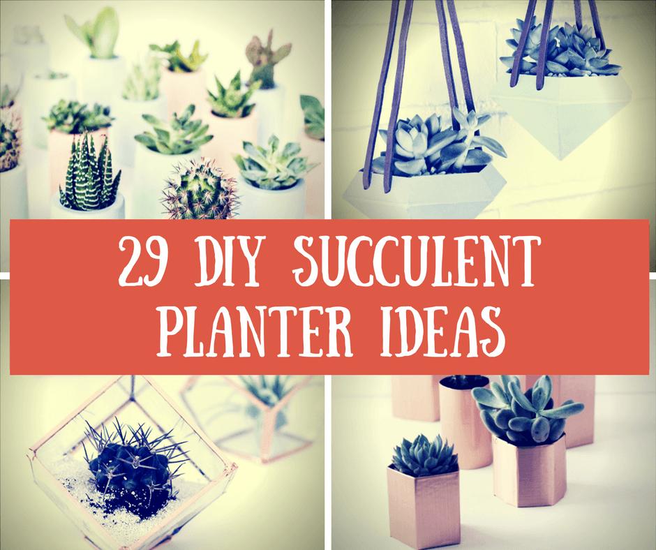 29 DIY Succulent Planter Ideas