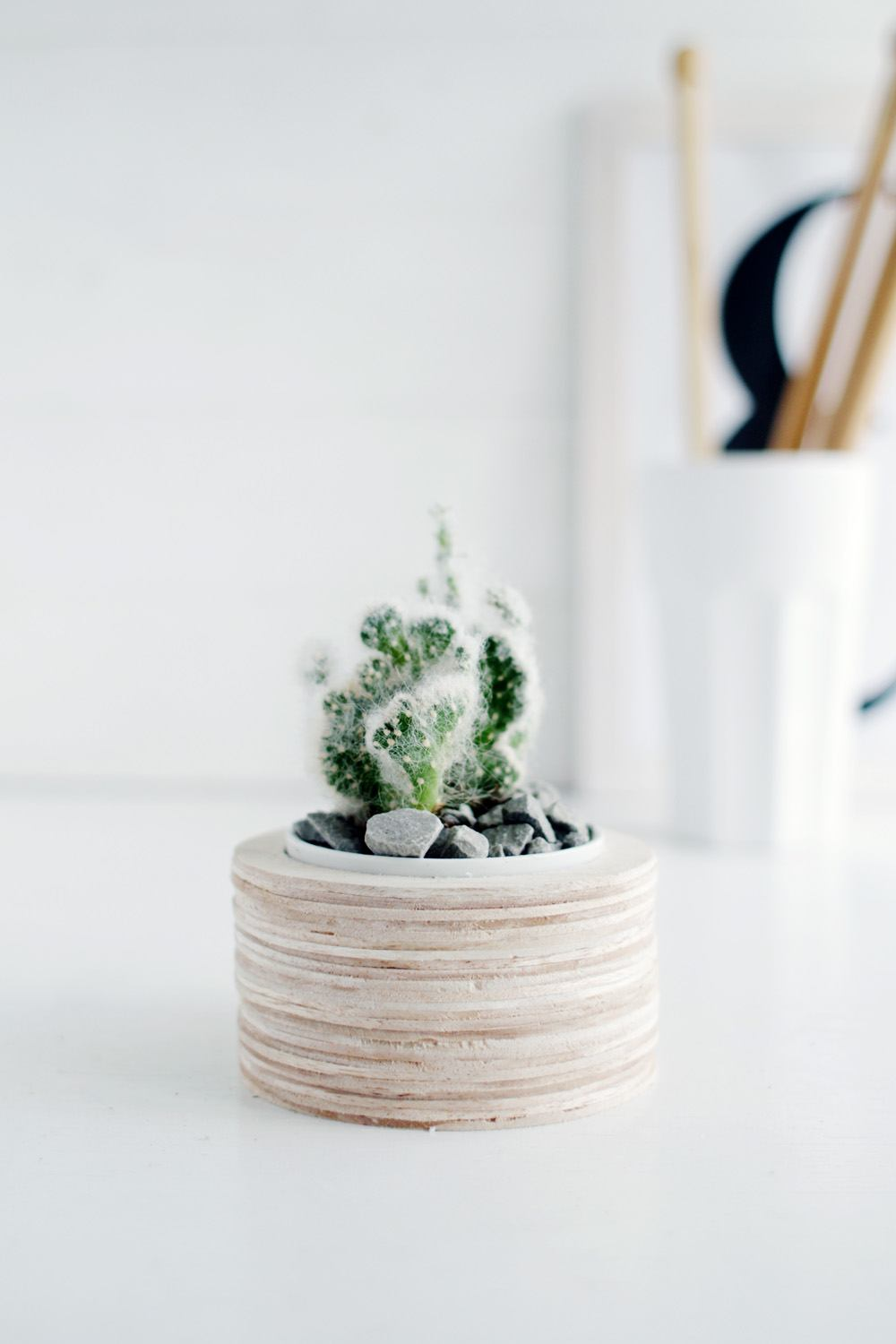 DIY Balsa Wood Planter