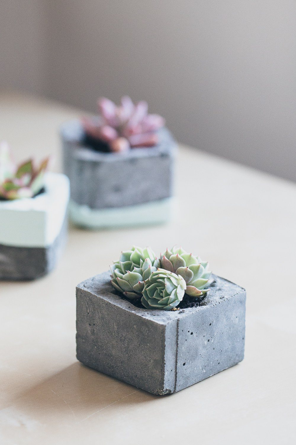 Design Succulent Planter Ideas 29 diy succulent planter ideas creative ways to display concrete planters