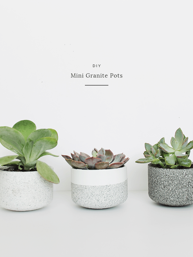 29 DIY Succulent Planter Ideas: Creative Ways to Display