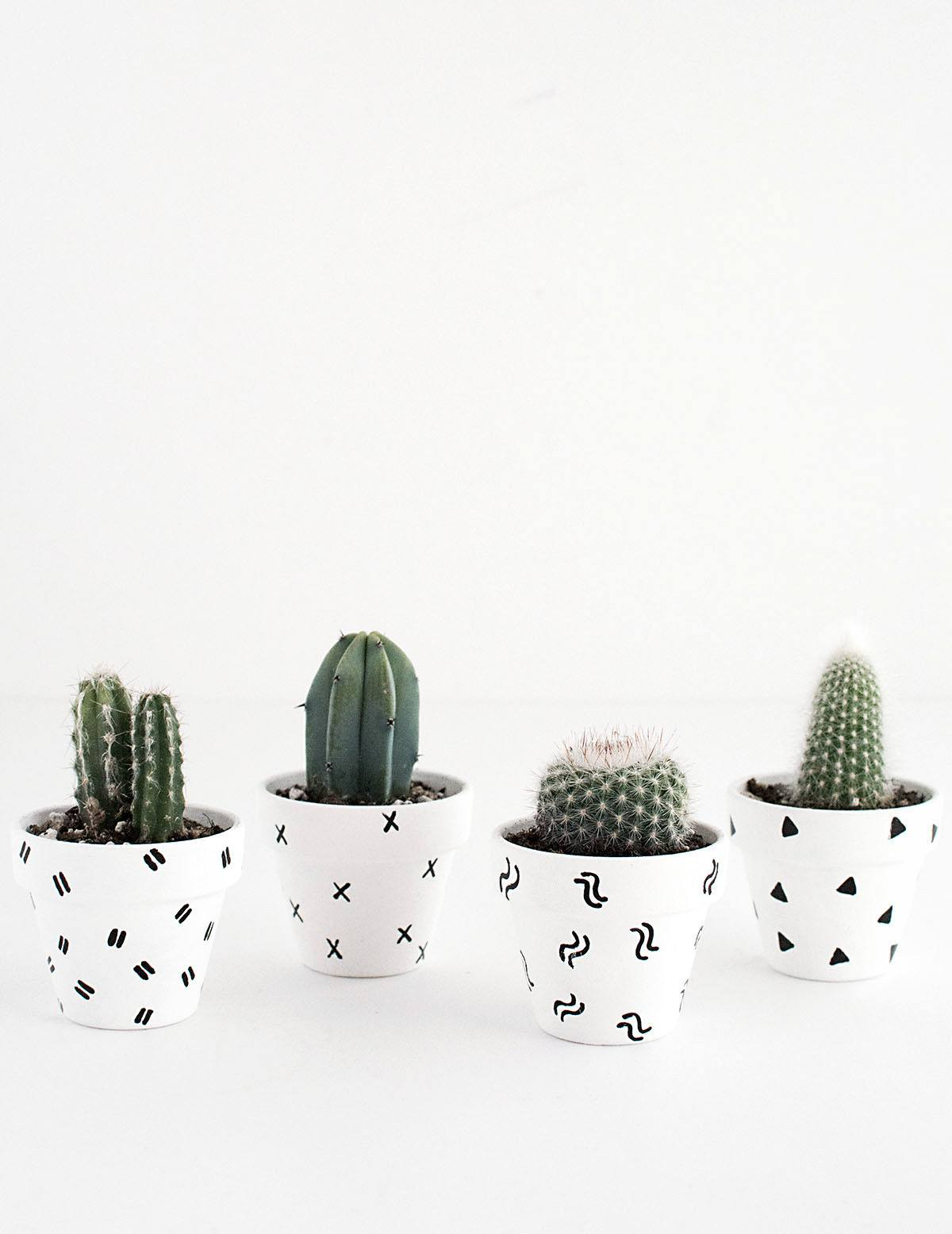 DIY Mini Pattern Plant Pots