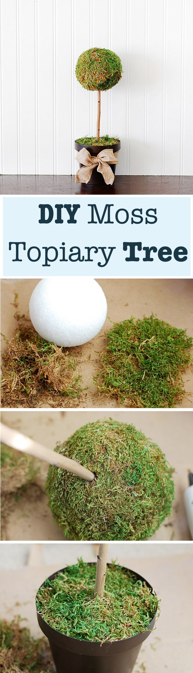 DIY Moss  Topiary Tree