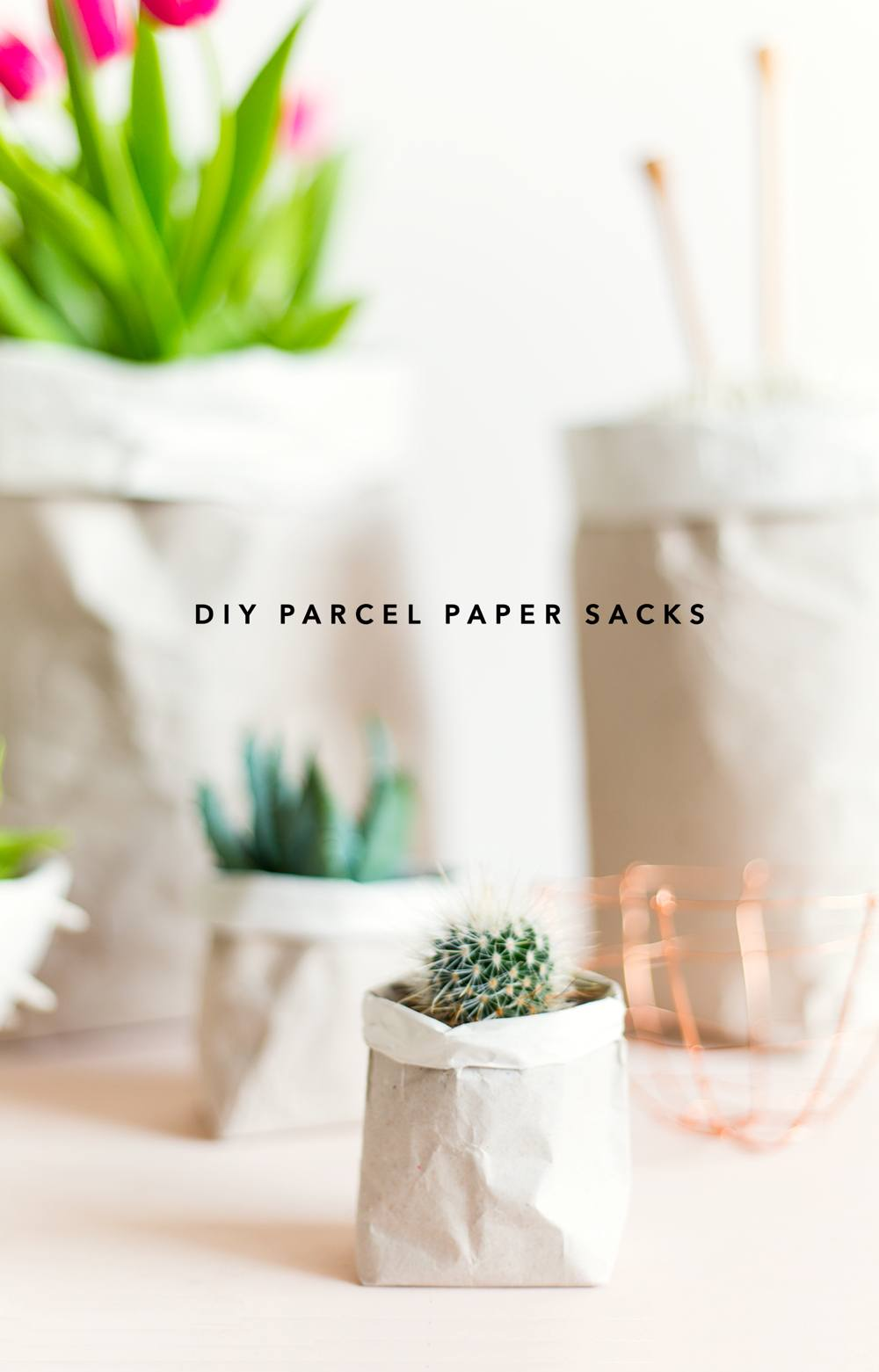 DIY Packing Paper Sack Planters & Vases