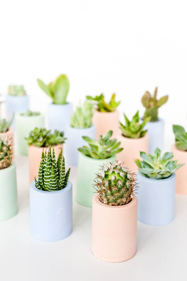 DIY Plaster Mini Planters