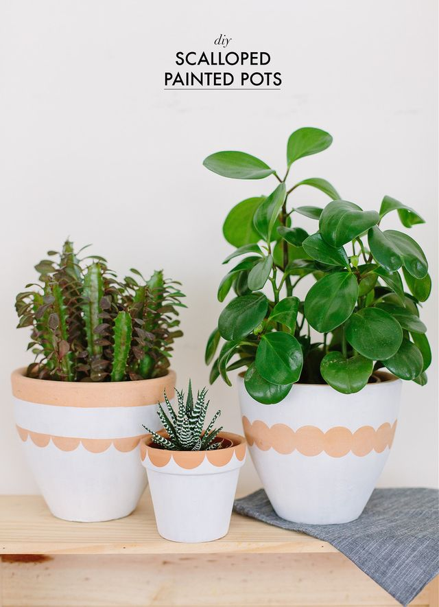 DIY Scalloped Painted Pots