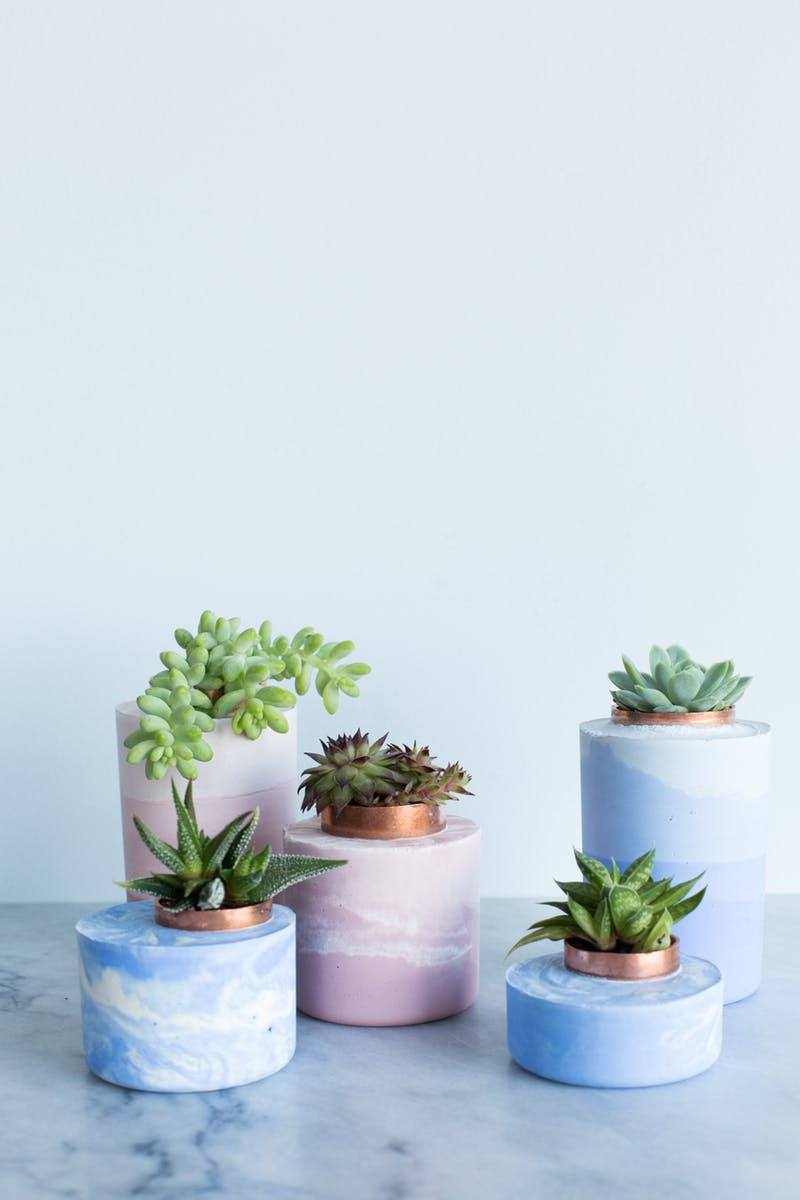 DIY Marbled and Ombre Concrete Succulent Planters