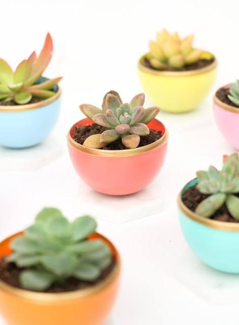 29 Diy Succulent Planter Ideas Creative Ways To Display