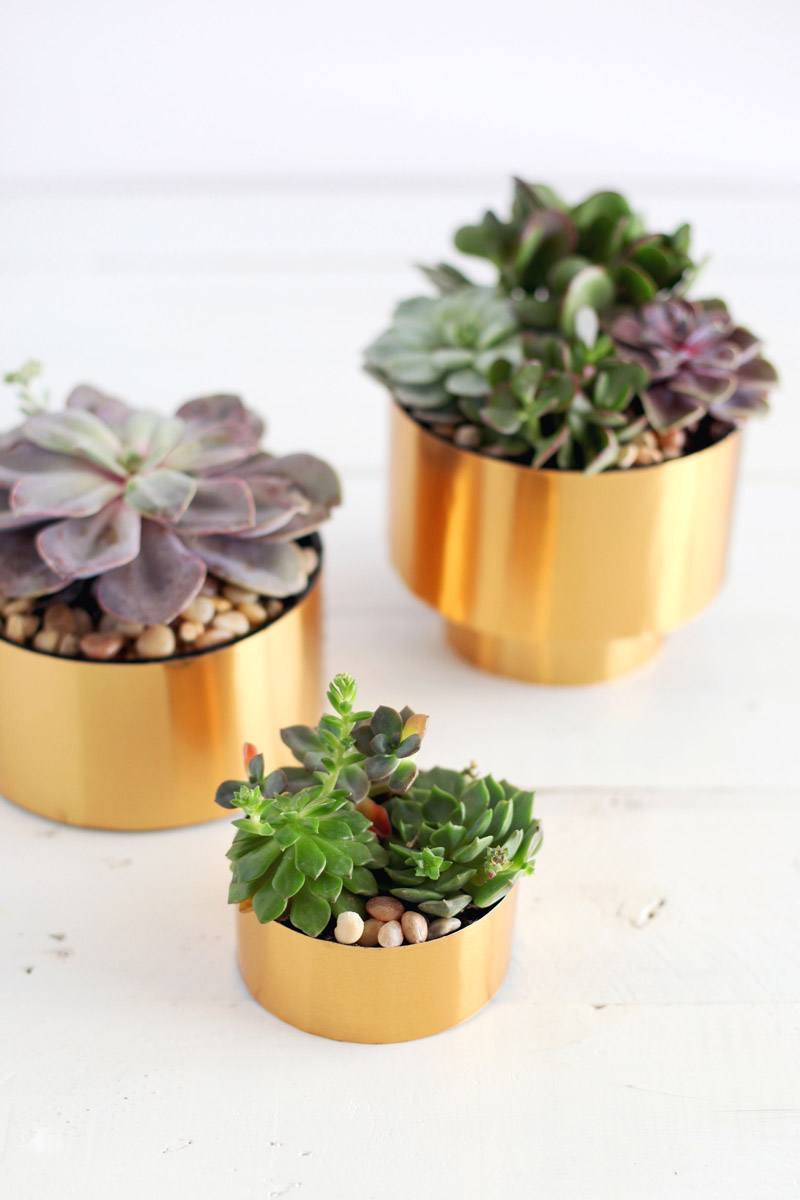 Small Brass Succulent Caps
