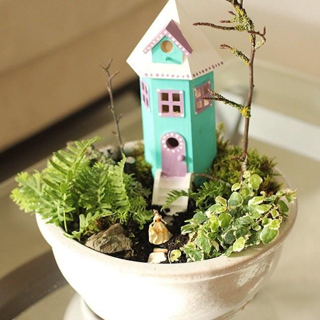Indoor Fairy Garden Ideas Part - 23: Small Indoor Fairy Garden