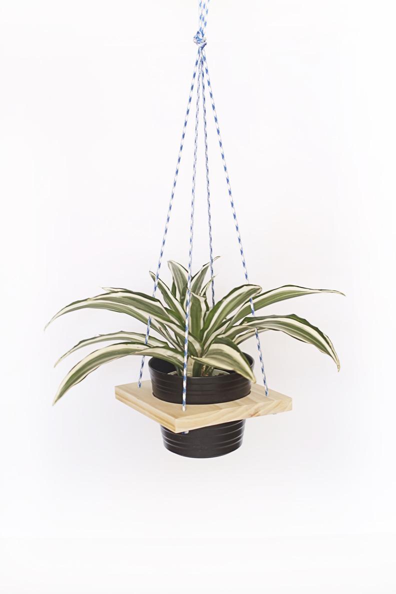 Wood DIY Plant Hanger