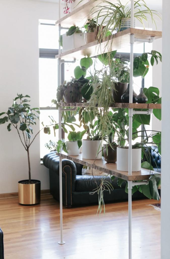Plant Shelves Room Divider